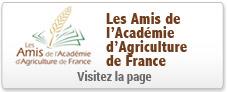 http://www.academie-agriculture.fr/sites/default/files/boutons-accueil-vignettes/vignette-amis-academie.jpg